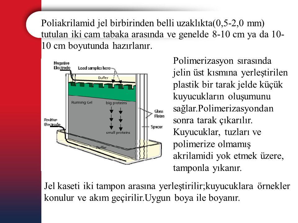 Poliakrilamid jel birbirinden belli uzaklıkta(0,5-2,0 mm) tutulan iki cam tabaka arasında ve genelde 8-10 cm ya da 10-10 cm boyutunda hazırlanır.