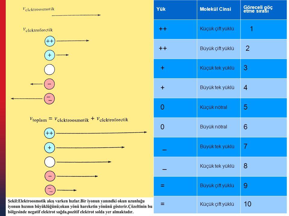 ++ 1 2 + 3 4 5 6 _ 7 8 = 9 10 Yük Molekül Cinsi