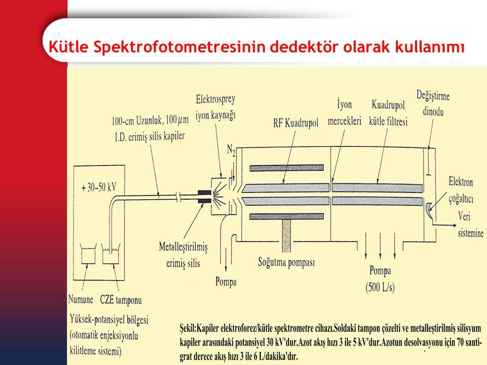 Kütle Spektrofotometresinin dedektör olarak kullanımı