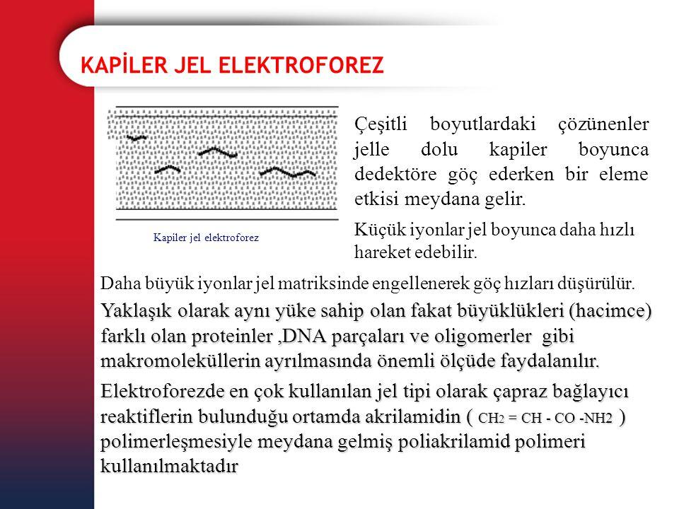 KAPİLER JEL ELEKTROFOREZ