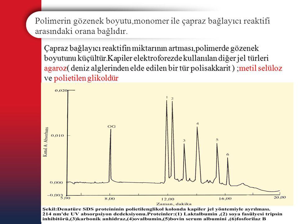 Polimerin gözenek boyutu,monomer ile çapraz bağlayıcı reaktifi arasındaki orana bağlıdır.