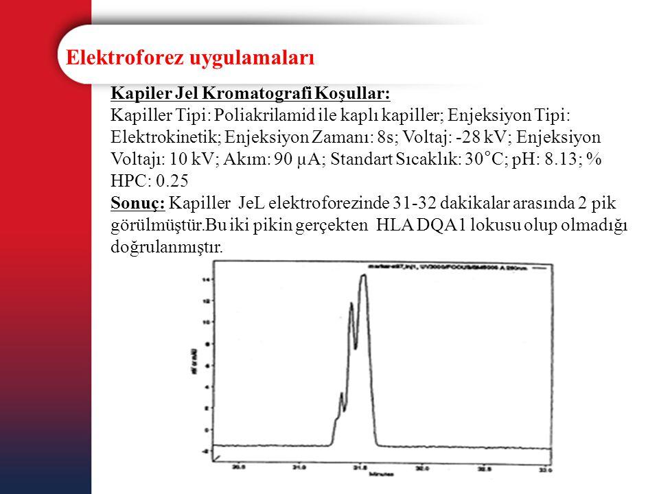 Elektroforez uygulamaları