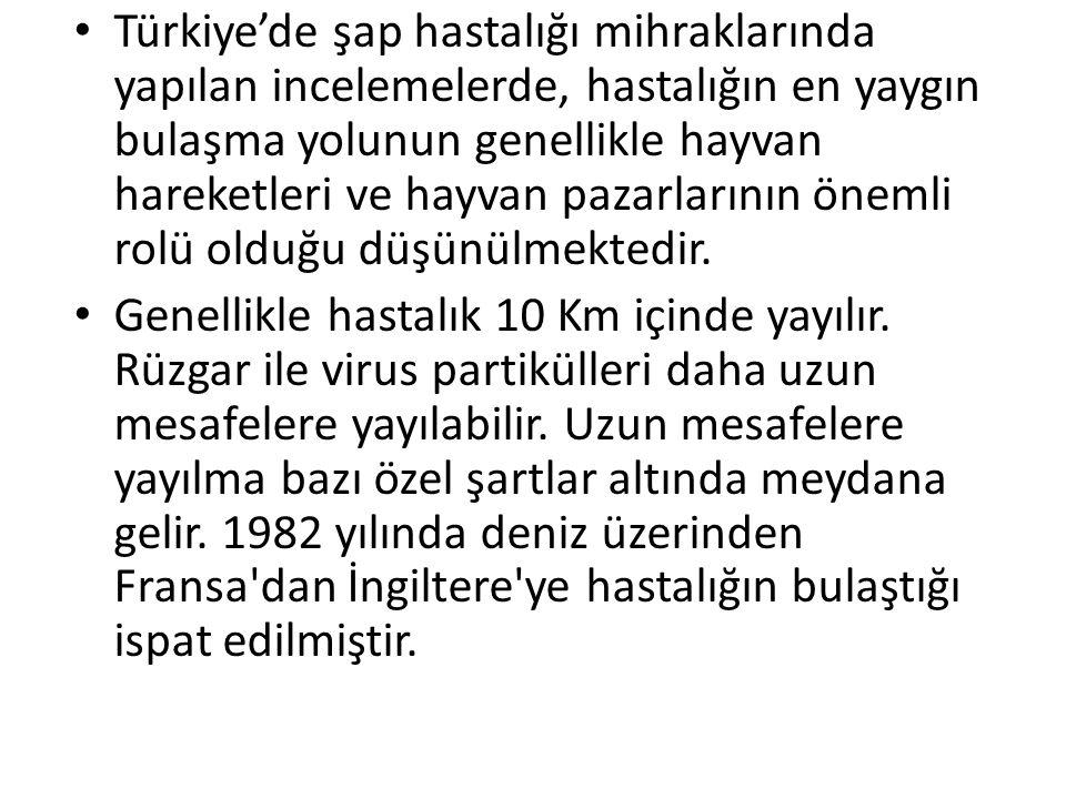 Türkiye'de şap hastalığı mihraklarında yapılan incelemelerde, hastalığın en yaygın bulaşma yolunun genellikle hayvan hareketleri ve hayvan pazarlarının önemli rolü olduğu düşünülmektedir.