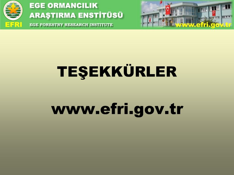 TEŞEKKÜRLER www.efri.gov.tr