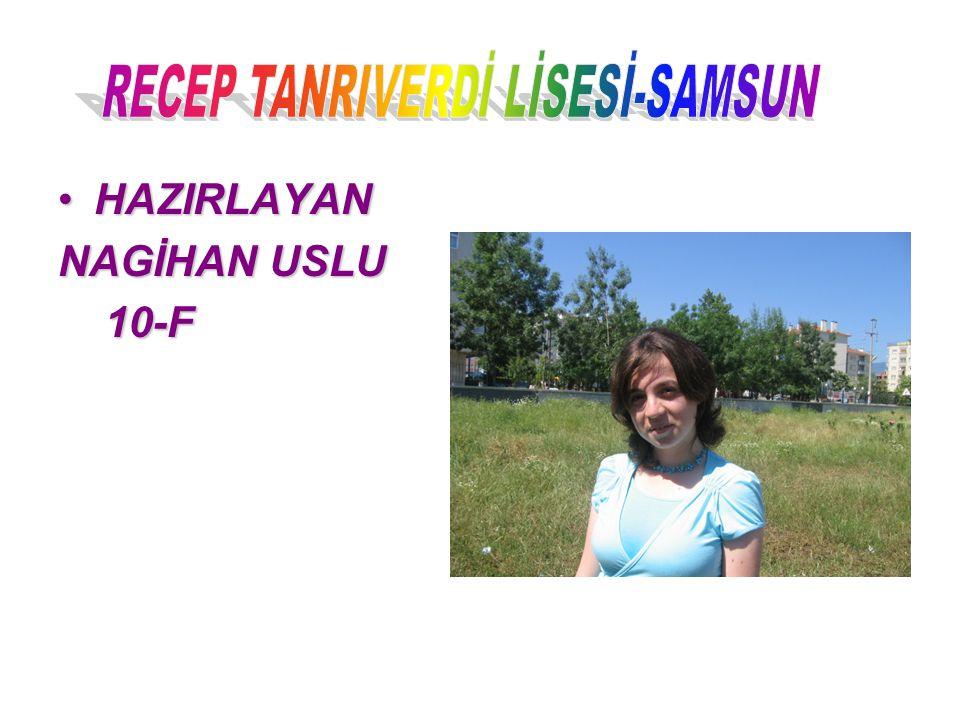 RECEP TANRIVERDİ LİSESİ-SAMSUN