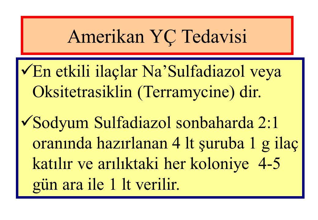 Amerikan YÇ Tedavisi En etkili ilaçlar Na'Sulfadiazol veya Oksitetrasiklin (Terramycine) dir.