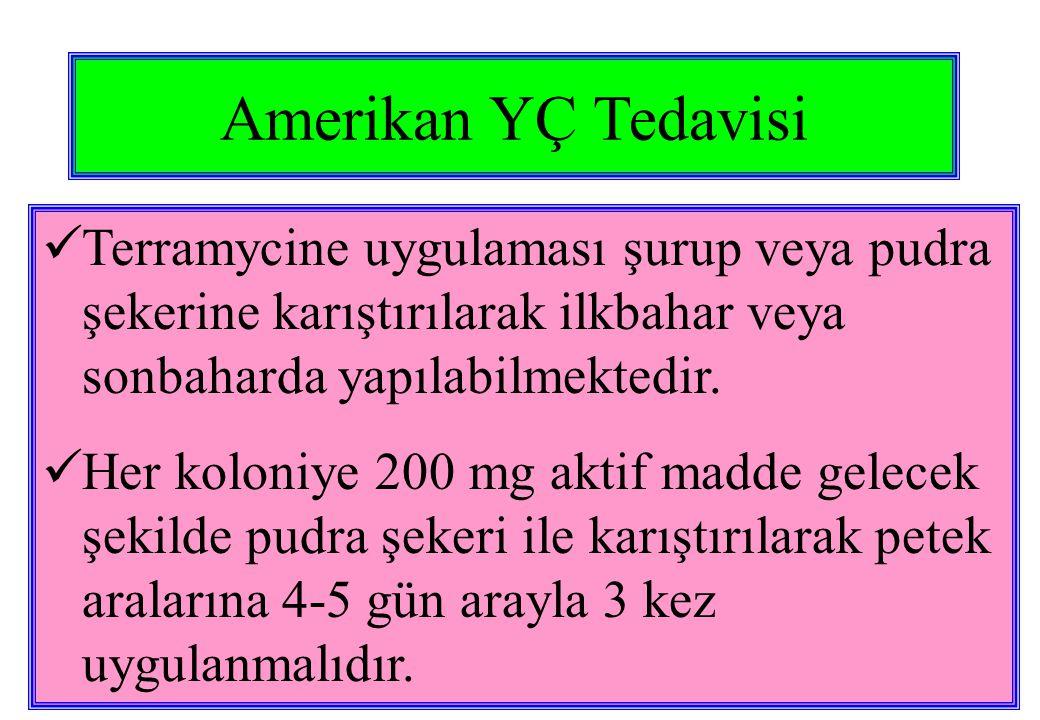 Amerikan YÇ Tedavisi Terramycine uygulaması şurup veya pudra şekerine karıştırılarak ilkbahar veya sonbaharda yapılabilmektedir.