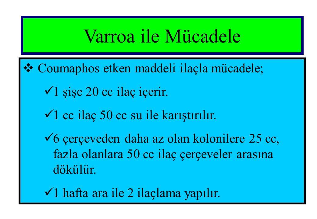 Varroa ile Mücadele Coumaphos etken maddeli ilaçla mücadele;