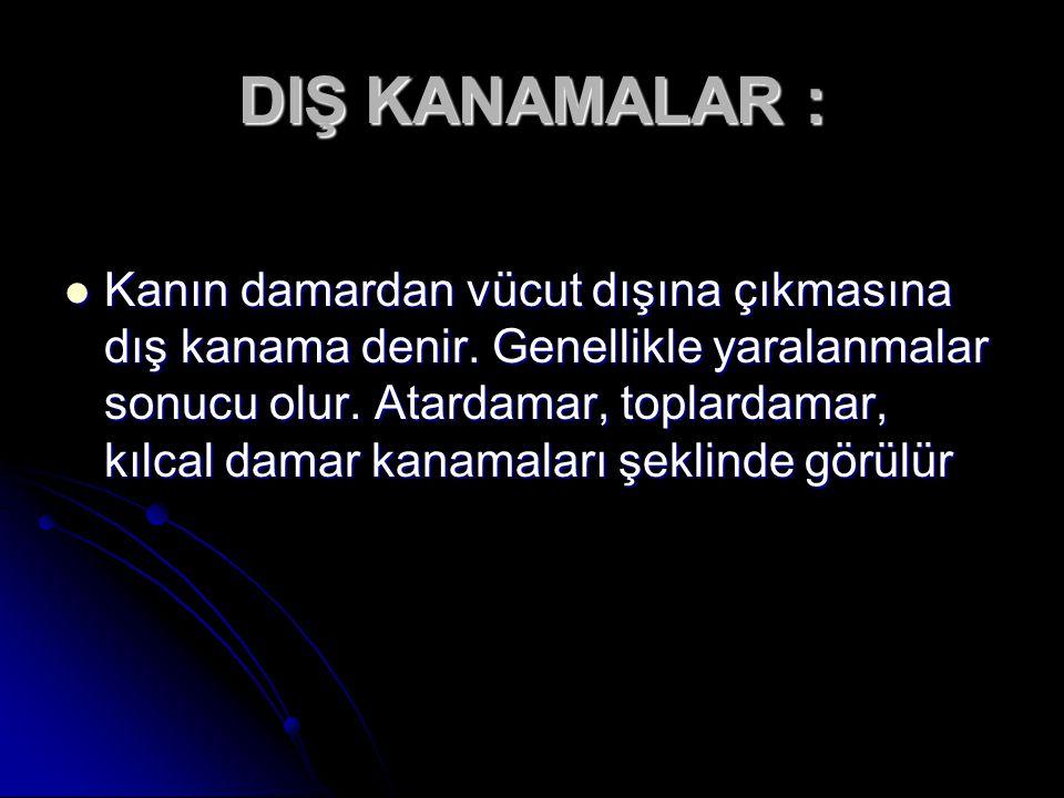 DIŞ KANAMALAR :