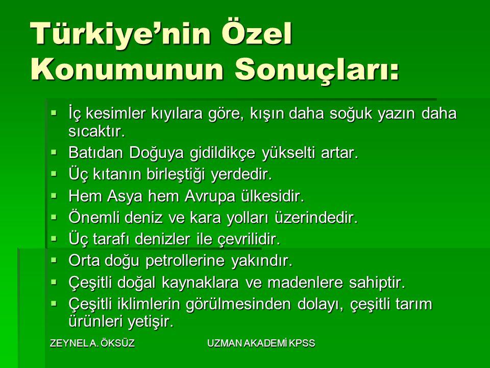 Türkiye'nin Özel Konumunun Sonuçları: