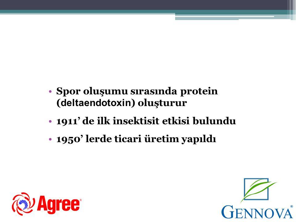 Spor oluşumu sırasında protein (deltaendotoxin) oluşturur