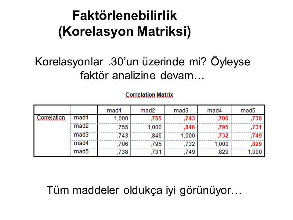Faktörlenebilirlik (Korelasyon Matriksi)