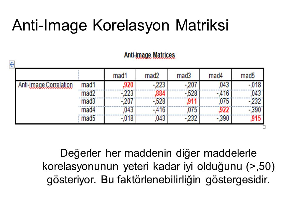 Anti-Image Korelasyon Matriksi