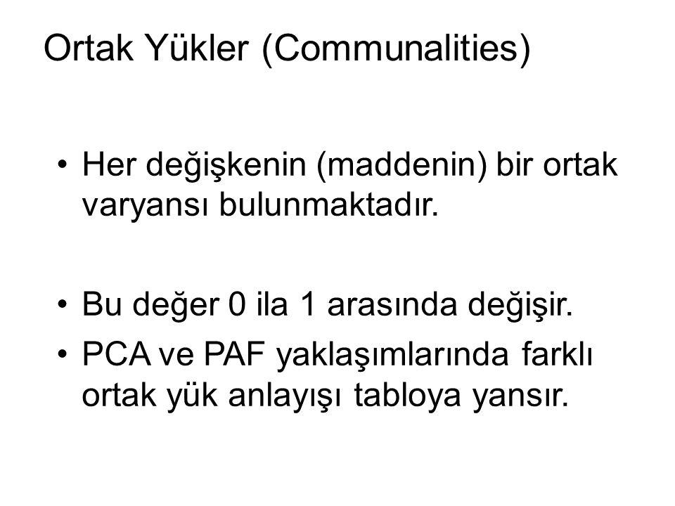 Ortak Yükler (Communalities)