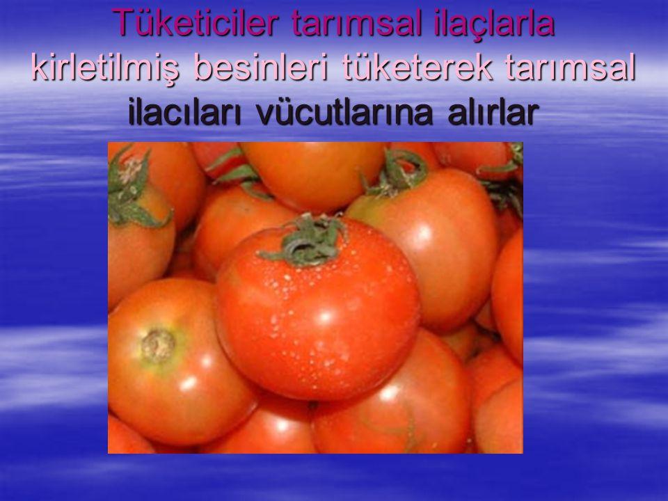 Tüketiciler tarımsal ilaçlarla kirletilmiş besinleri tüketerek tarımsal ilacıları vücutlarına alırlar