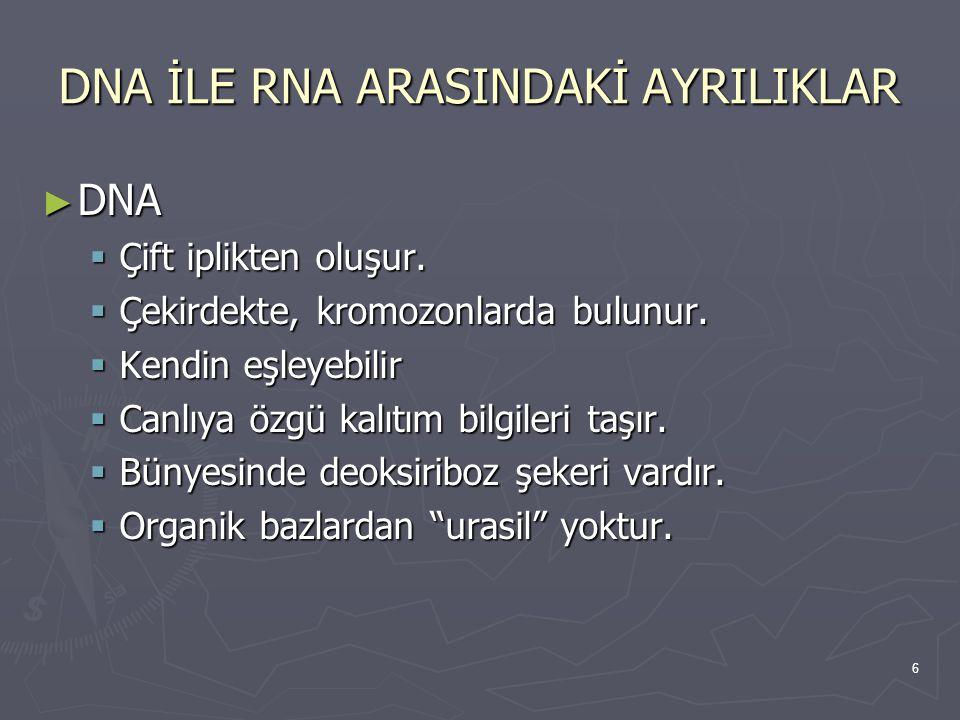 DNA İLE RNA ARASINDAKİ AYRILIKLAR