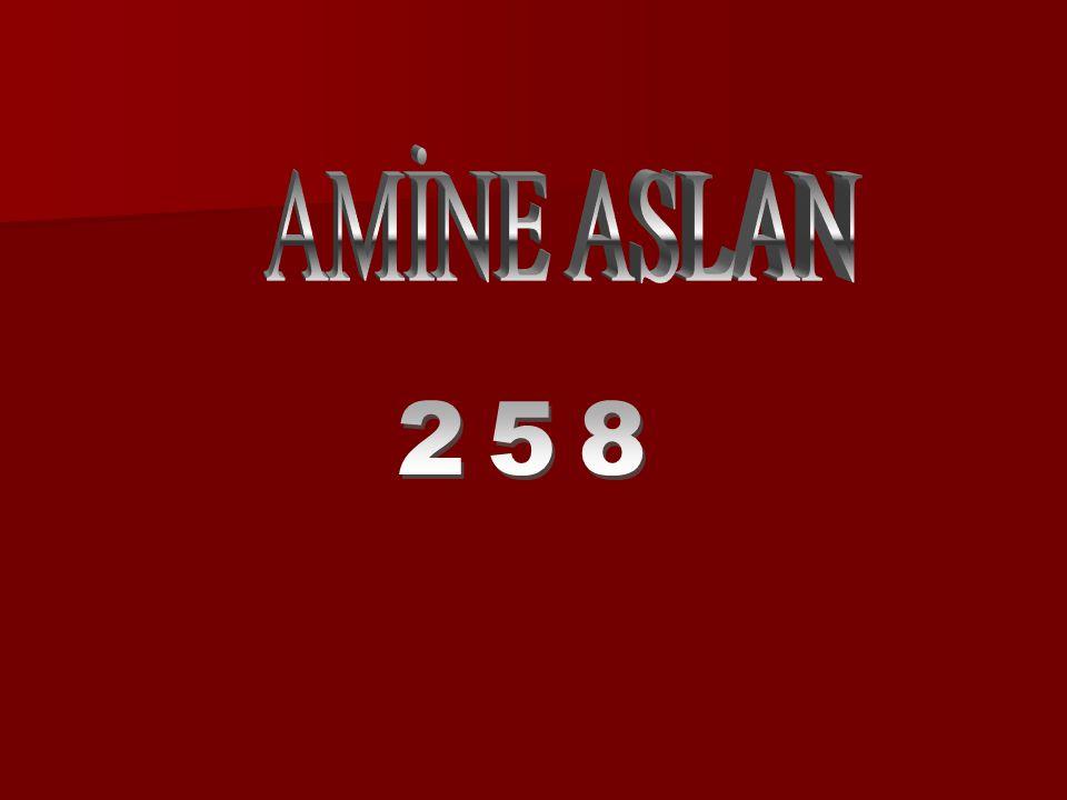 AMİNE ASLAN 258