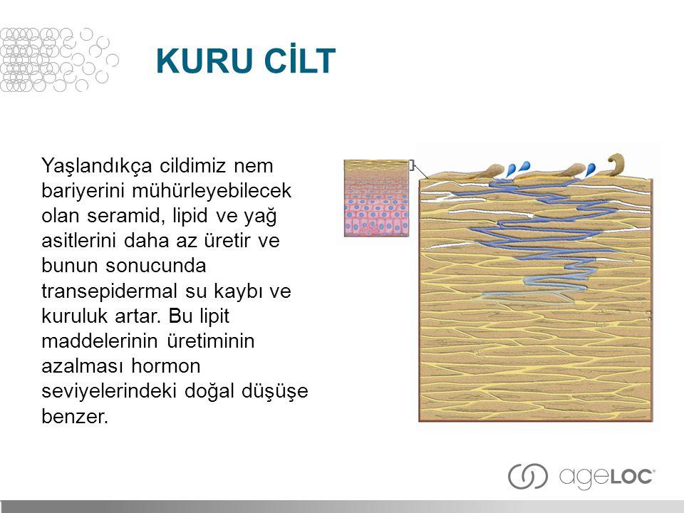 Kuru Cİlt