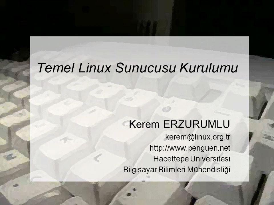 Temel Linux Sunucusu Kurulumu