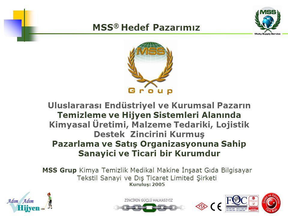 MSS® Hedef Pazarımız Uluslararası Endüstriyel ve Kurumsal Pazarın