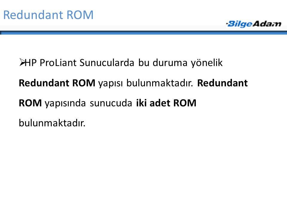 Redundant ROM