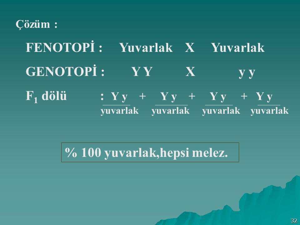 FENOTOPİ : Yuvarlak X Yuvarlak GENOTOPİ : Y Y X y y