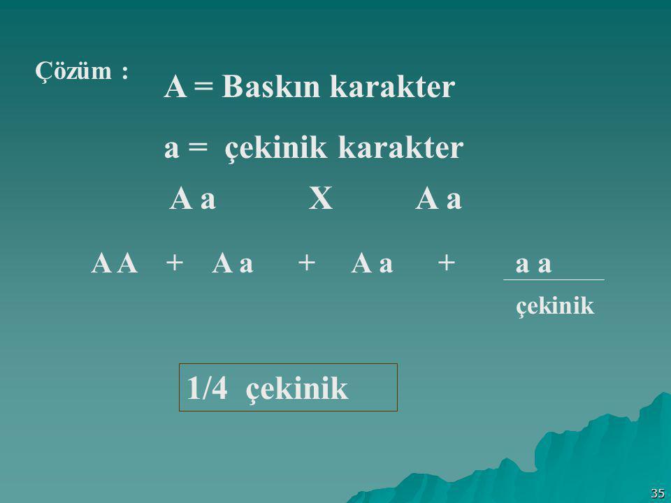 A = Baskın karakter a = çekinik karakter A a X A a 1/4 çekinik