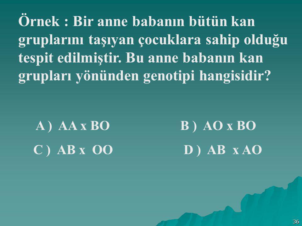 Örnek : Bir anne babanın bütün kan gruplarını taşıyan çocuklara sahip olduğu tespit edilmiştir. Bu anne babanın kan grupları yönünden genotipi hangisidir