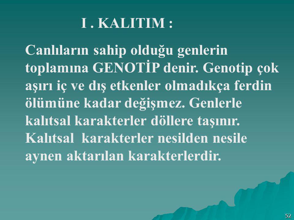 I . KALITIM :