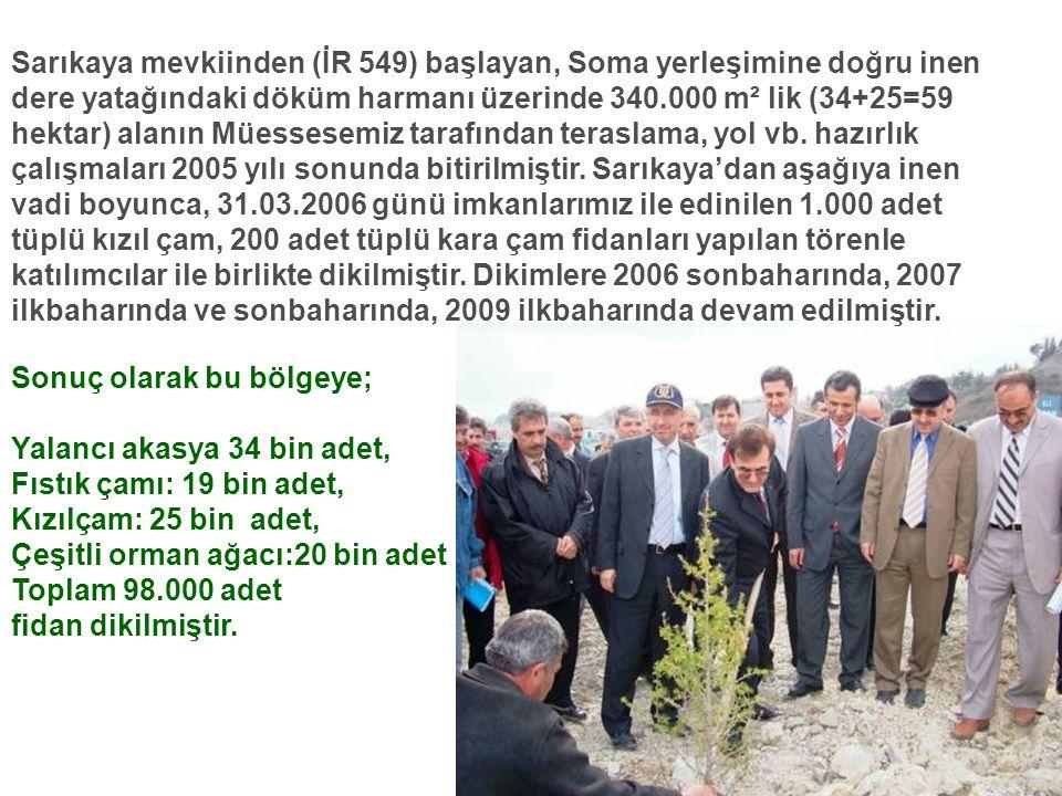 Sarıkaya mevkiinden (İR 549) başlayan, Soma yerleşimine doğru inen dere yatağındaki döküm harmanı üzerinde 340.000 m² lik (34+25=59 hektar) alanın Müessesemiz tarafından teraslama, yol vb. hazırlık çalışmaları 2005 yılı sonunda bitirilmiştir. Sarıkaya'dan aşağıya inen vadi boyunca, 31.03.2006 günü imkanlarımız ile edinilen 1.000 adet tüplü kızıl çam, 200 adet tüplü kara çam fidanları yapılan törenle katılımcılar ile birlikte dikilmiştir. Dikimlere 2006 sonbaharında, 2007 ilkbaharında ve sonbaharında, 2009 ilkbaharında devam edilmiştir. Sonuç olarak bu bölgeye; Yalancı akasya 34 bin adet,