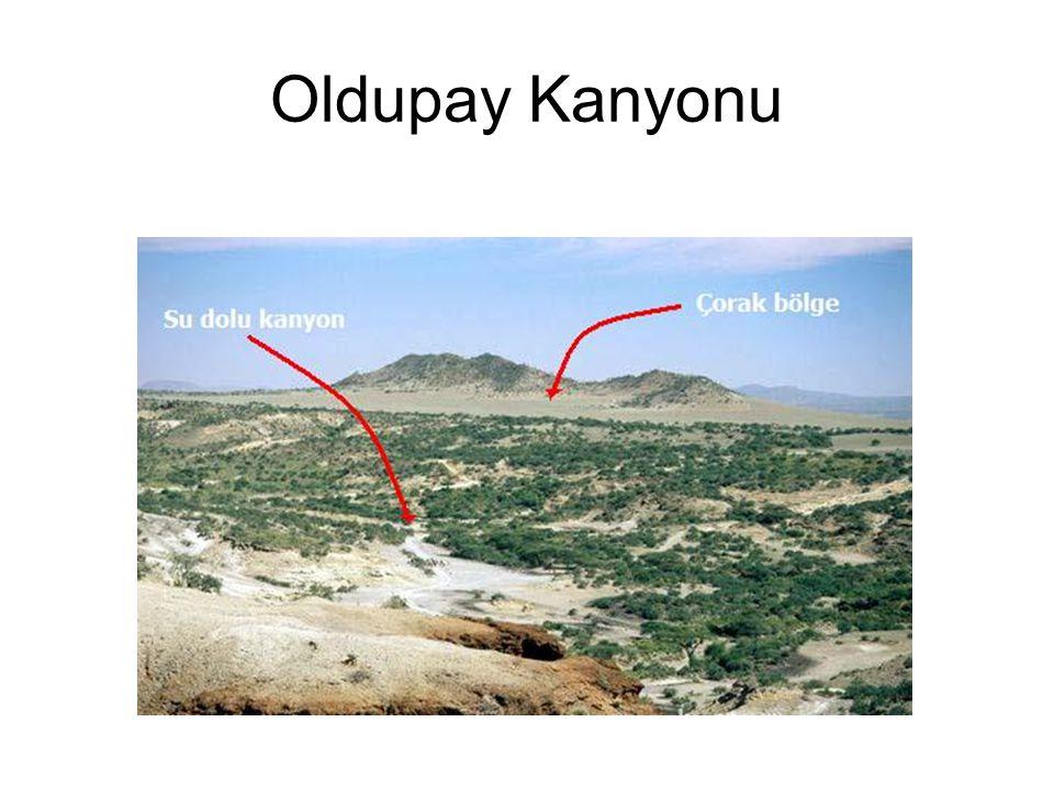 Oldupay Kanyonu