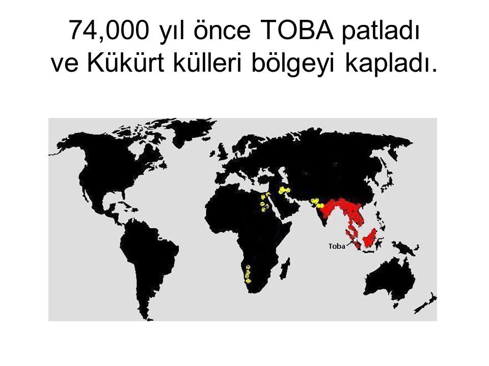 74,000 yıl önce TOBA patladı ve Kükürt külleri bölgeyi kapladı.