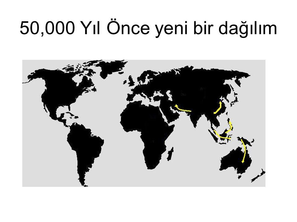50,000 Yıl Önce yeni bir dağılım