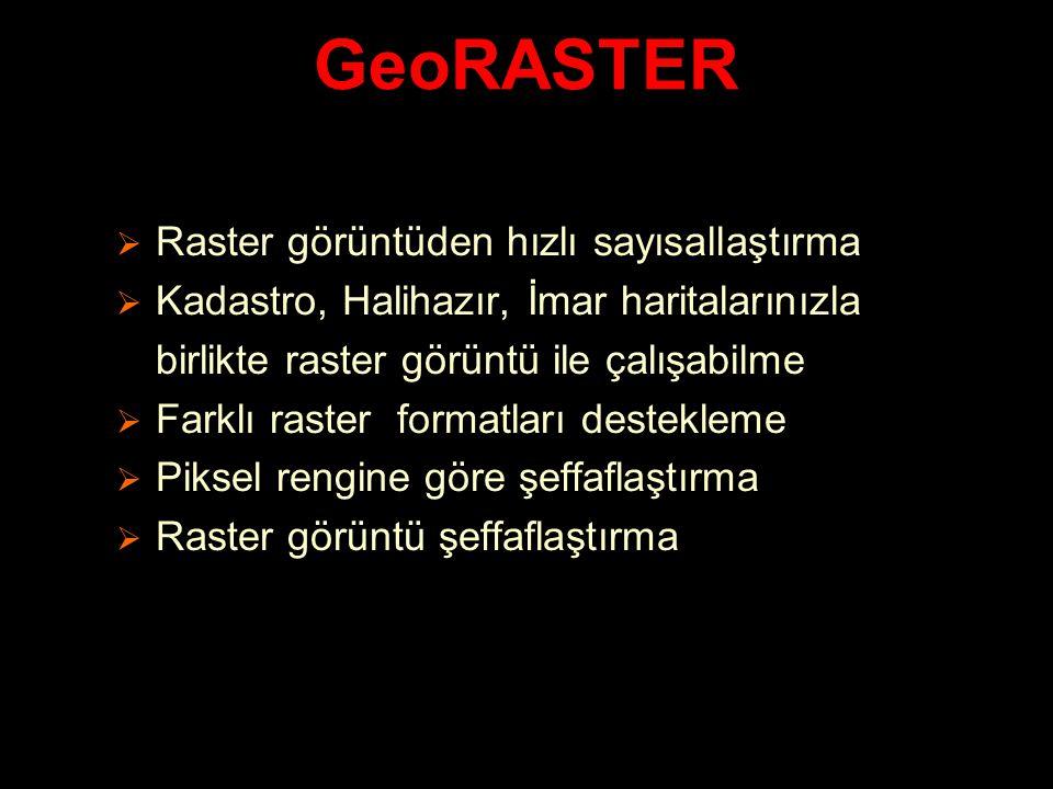 GeoRASTER Raster görüntüden hızlı sayısallaştırma