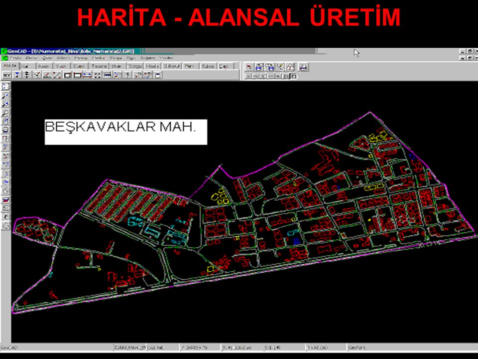 HARİTA - ALANSAL ÜRETİM