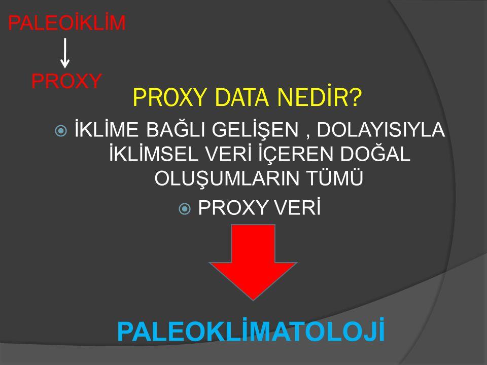 PROXY DATA NEDİR PALEOKLİMATOLOJİ PALEOİKLİM PROXY