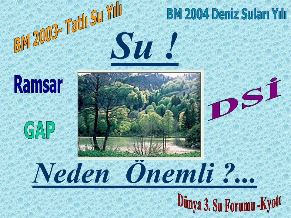 Su ! Neden Önemli ... Ramsar DSİ GAP BM 2003- Tatlı Su Yılı