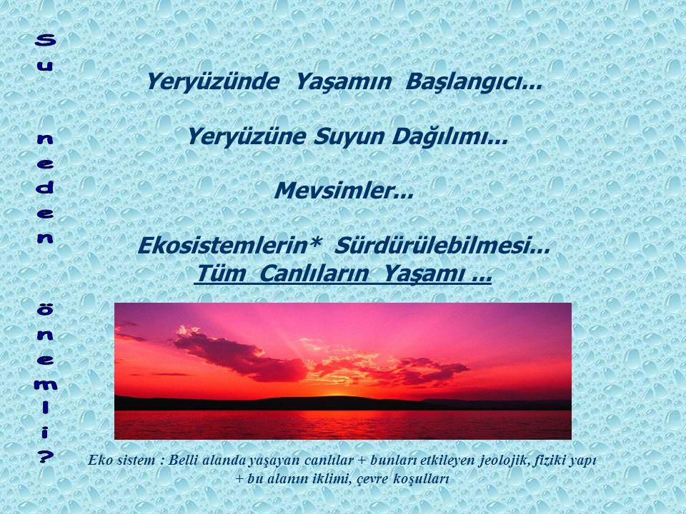 Yeryüzünde Yaşamın Başlangıcı... Yeryüzüne Suyun Dağılımı...