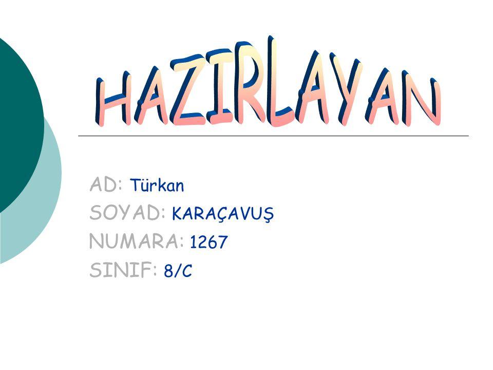 AD: Türkan SOYAD: KARAÇAVUŞ NUMARA: 1267 SINIF: 8/C