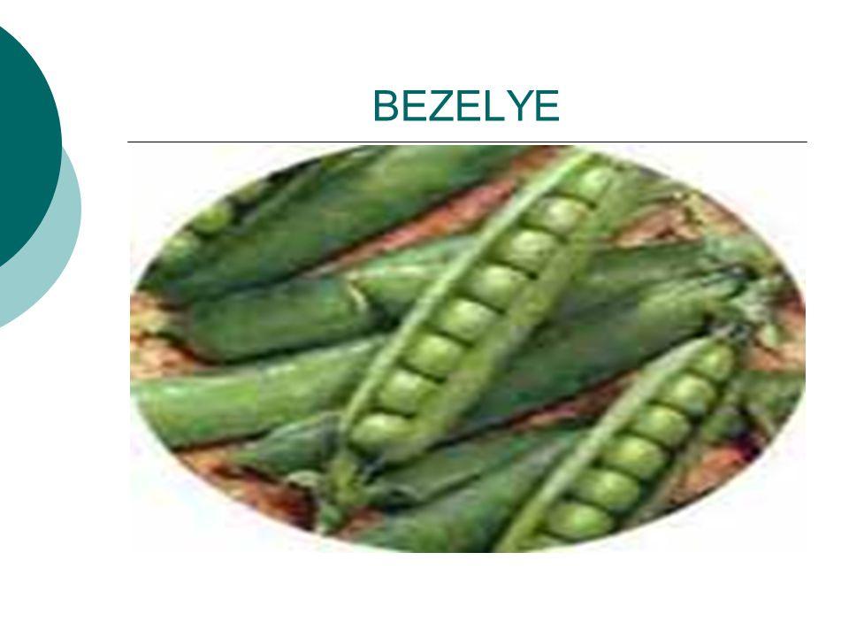 BEZELYE