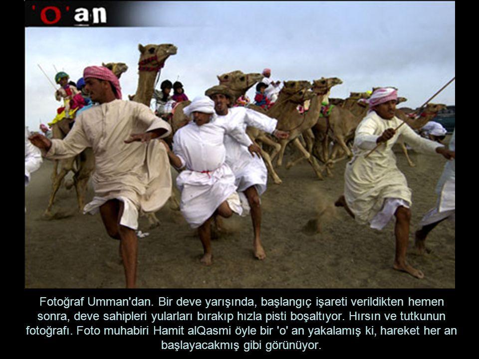 Fotoğraf Umman dan.