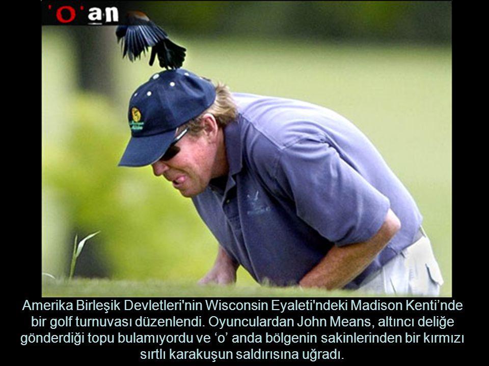 Amerika Birleşik Devletleri nin Wisconsin Eyaleti ndeki Madison Kenti'nde bir golf turnuvası düzenlendi.