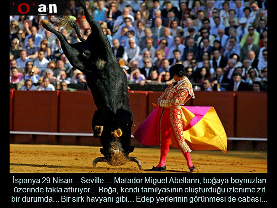 İspanya 29 Nisan... Seville....