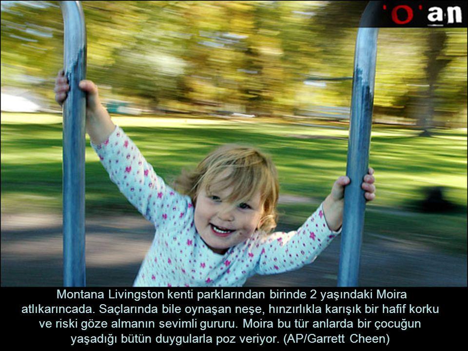 Montana Livingston kenti parklarından birinde 2 yaşındaki Moira atlıkarıncada.