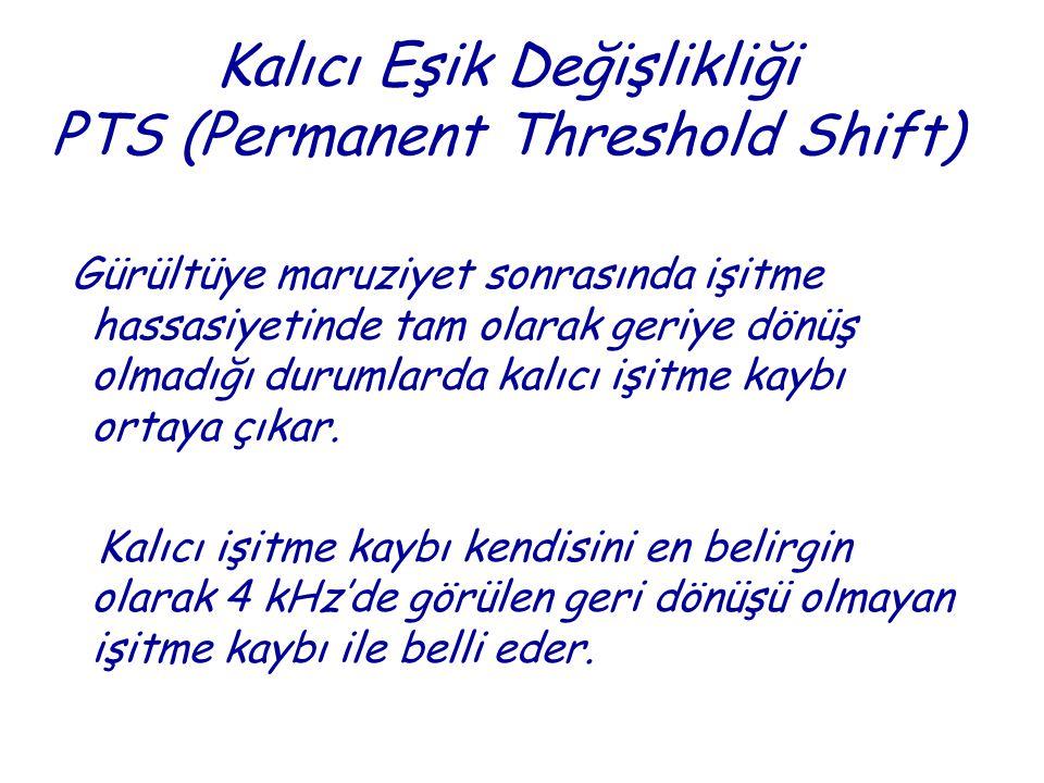 Kalıcı Eşik Değişlikliği PTS (Permanent Threshold Shift)