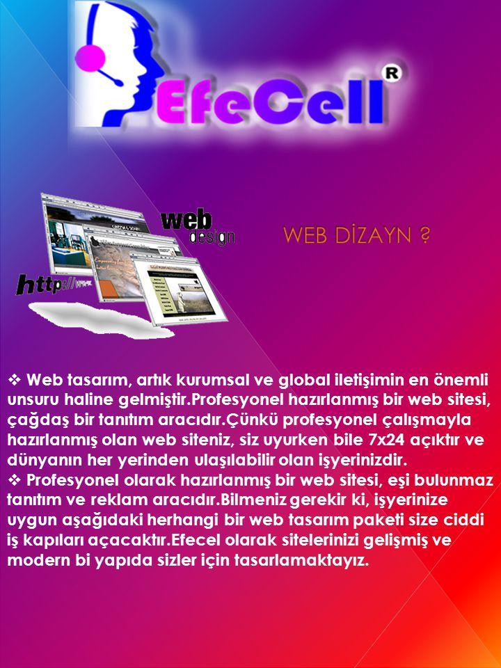 WEB DİZAYN