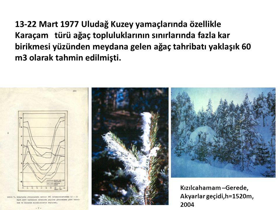 13-22 Mart 1977 Uludağ Kuzey yamaçlarında özellikle Karaçam türü ağaç topluluklarının sınırlarında fazla kar birikmesi yüzünden meydana gelen ağaç tahribatı yaklaşık 60 m3 olarak tahmin edilmişti.