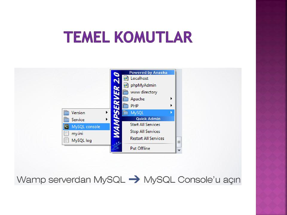 TEMEL KOMUTLAR