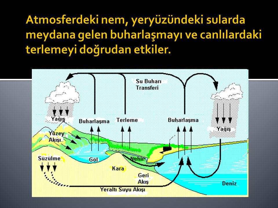 Atmosferdeki nem, yeryüzündeki sularda meydana gelen buharlaşmayı ve canlılardaki terlemeyi doğrudan etkiler.