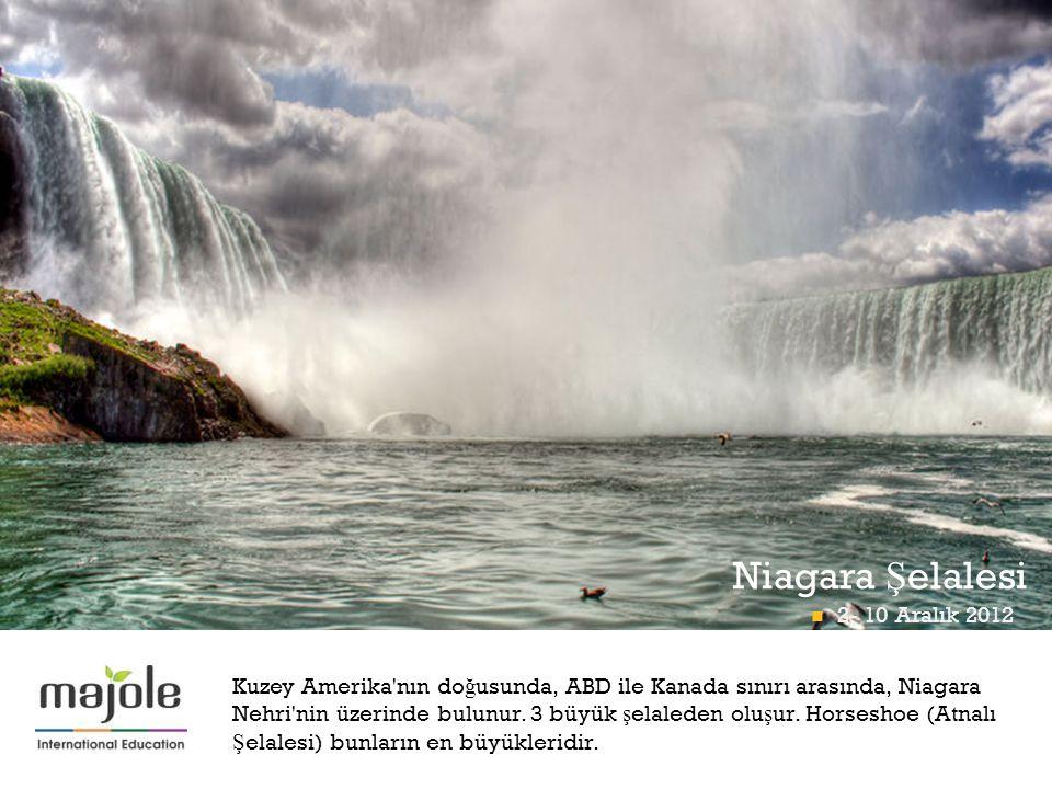 Niagara Şelalesi 2- 10 Aralık 2012